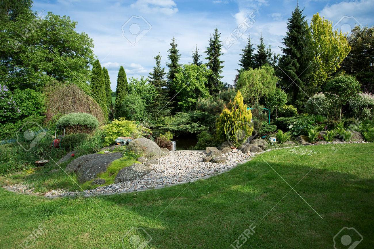 beautiful spring garden design with conifer trees green grass and pond stock photo - Garden Design Trees
