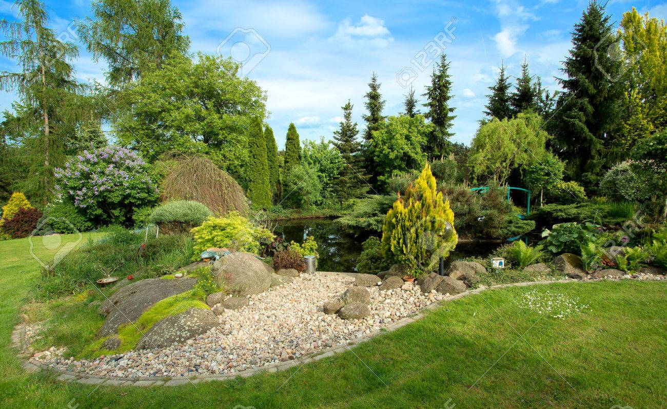 beautiful spring garden design with conifer trees green grass and eneving sun in - Garden Design Trees