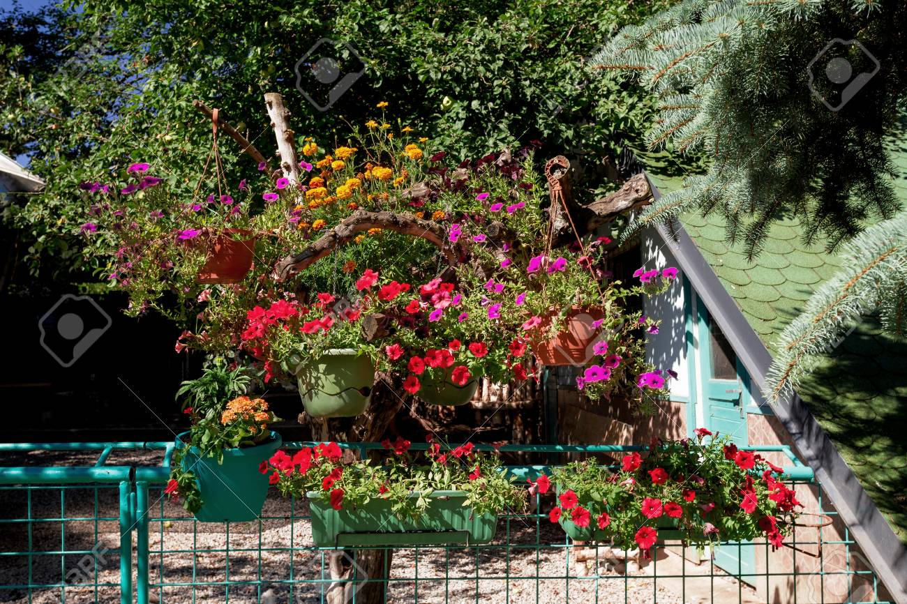 Beautiful Summer Garden Design, Trees With Pots And Red Petunia ...