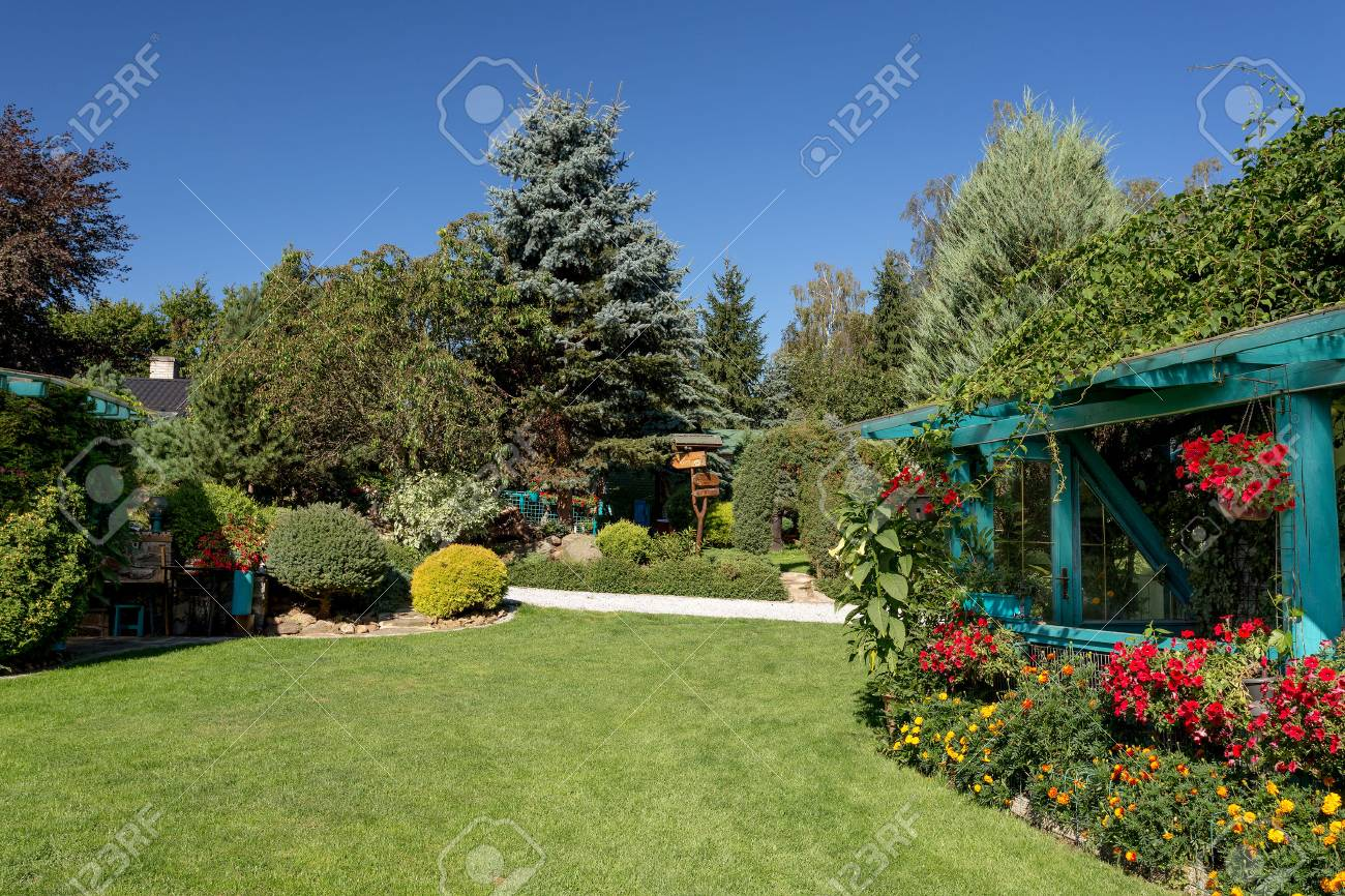 Beautiful Summer Garden Design, With Conifer Trees, Green Gr ... on french garden design, color garden design, water garden design, butterfly garden design, kitchen garden design, laying out garden design, wood garden design, knot garden design, food garden design, botanical garden design, modern garden design, circle garden design, bulb garden design, white garden design, bog garden design, wildlife garden design, corner garden design, natural garden design, forest garden design, shade garden design,