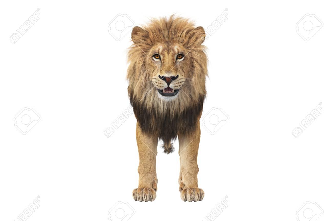 Google 3d Animals List Lions Tigers Dinos