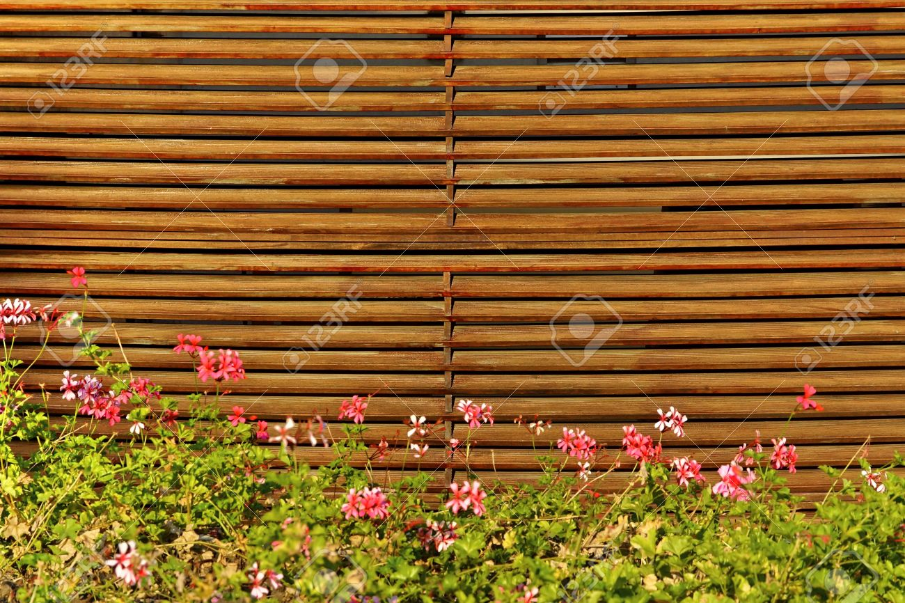 wood fence in the backyard background stock photo picture and