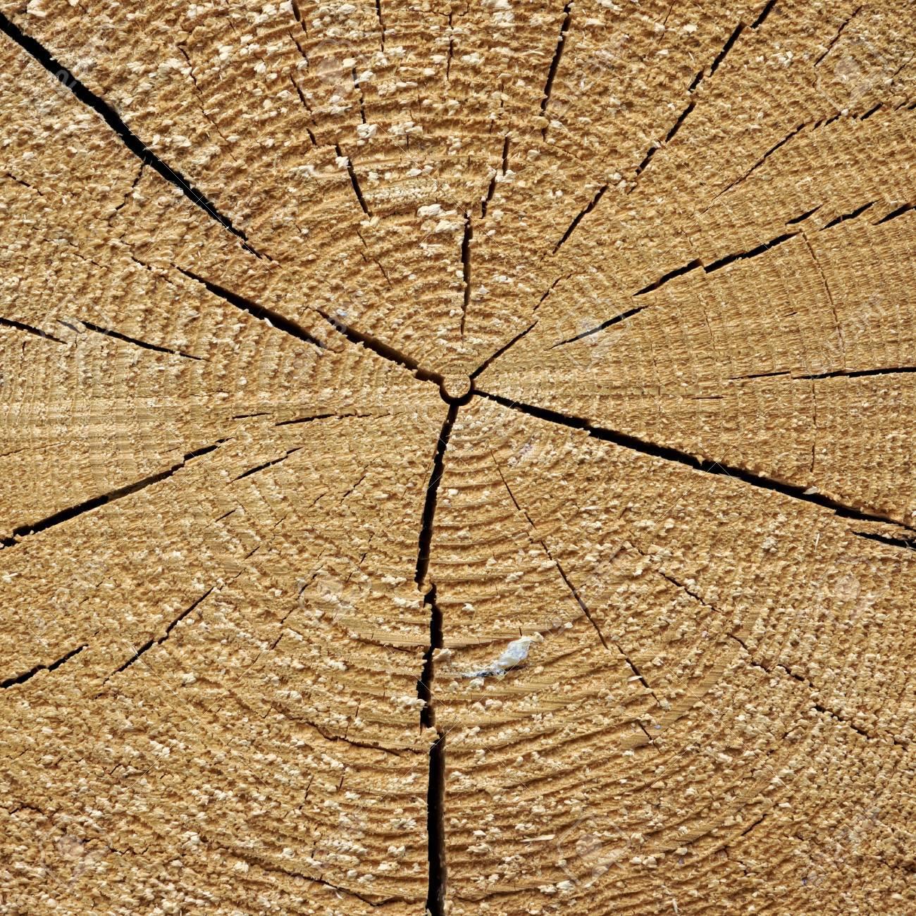 Natürliche Alte Holz-Korn-Log Square Frame Textur Hintergrund ...