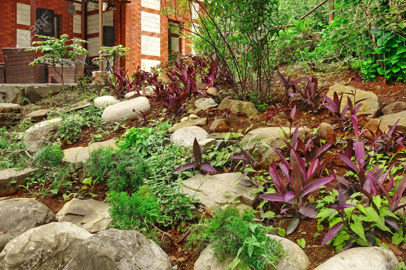Ornamental Backyard Garden With Small Hill Tropical Plants Stock Photo Picture And Royalty Free Image Image 60726352