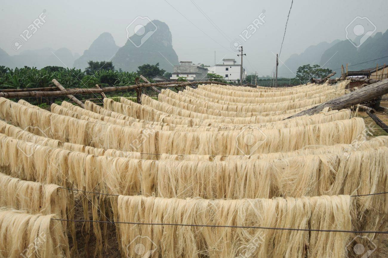 fibra de sisal materia prima de china foto de archivo