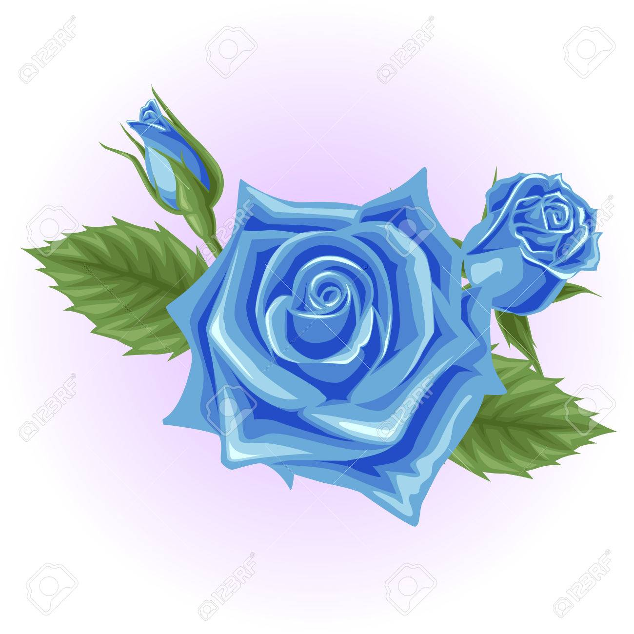 Blue Rose Flower Illustration Royalty Free Cliparts Vectors And