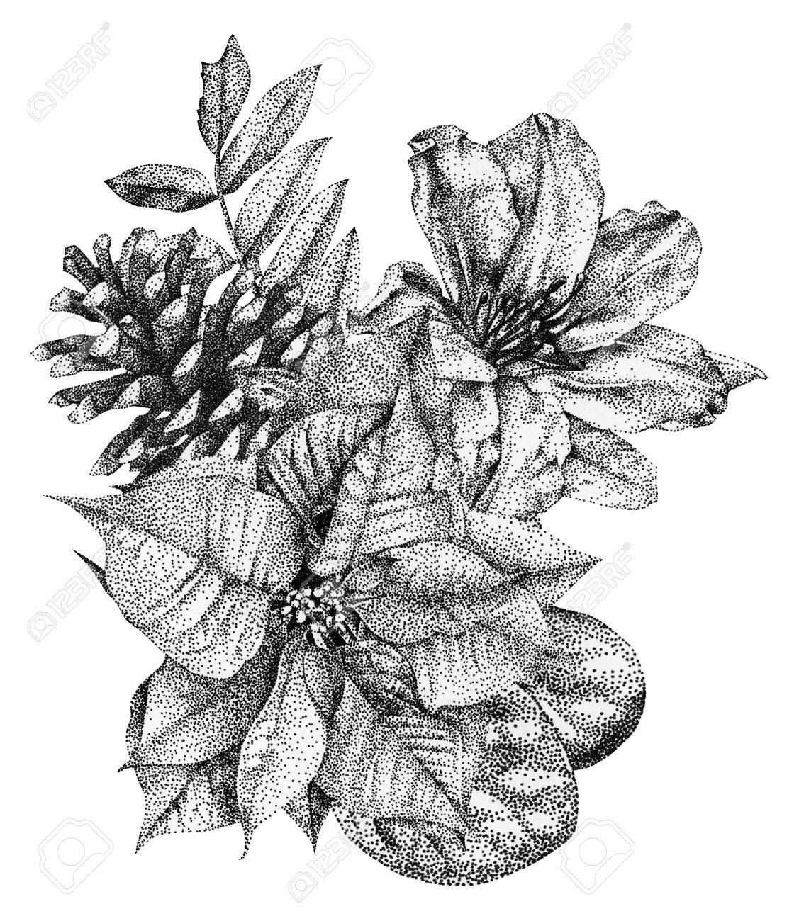 Composition De Differentes Fleurs Et Plantes Dessin Graphique