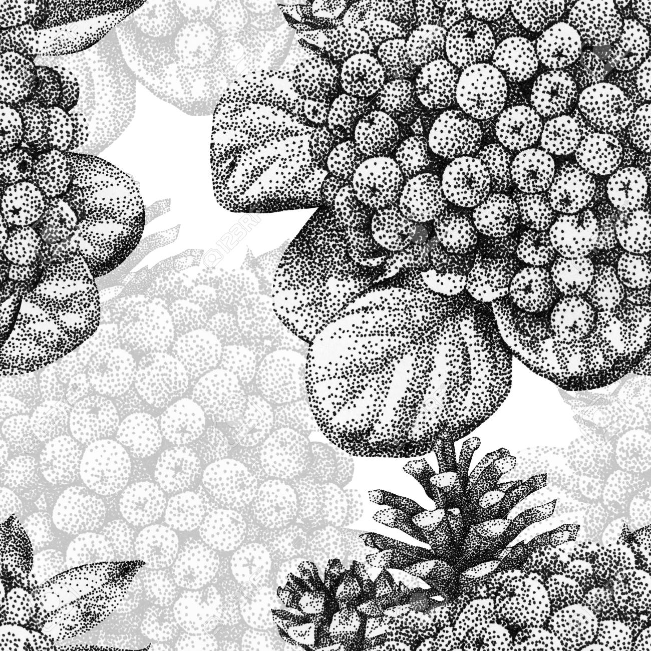 Seamless Pattern With Different Plants Drawn By Hand With Black