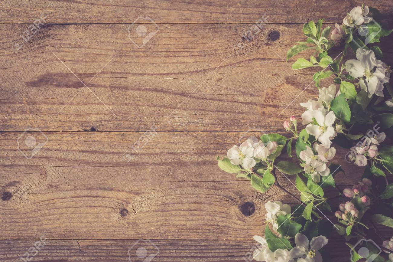 Spring Flowers Apple Blossoms On Rustic Wooden Background With Copy Space Stock Photo