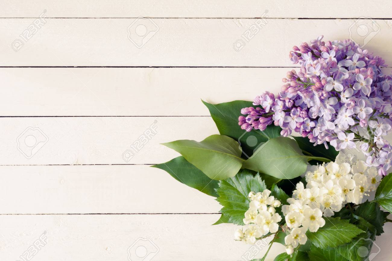 Lilac Flowers And White Flowers With Green Leaves On Vintage Stock