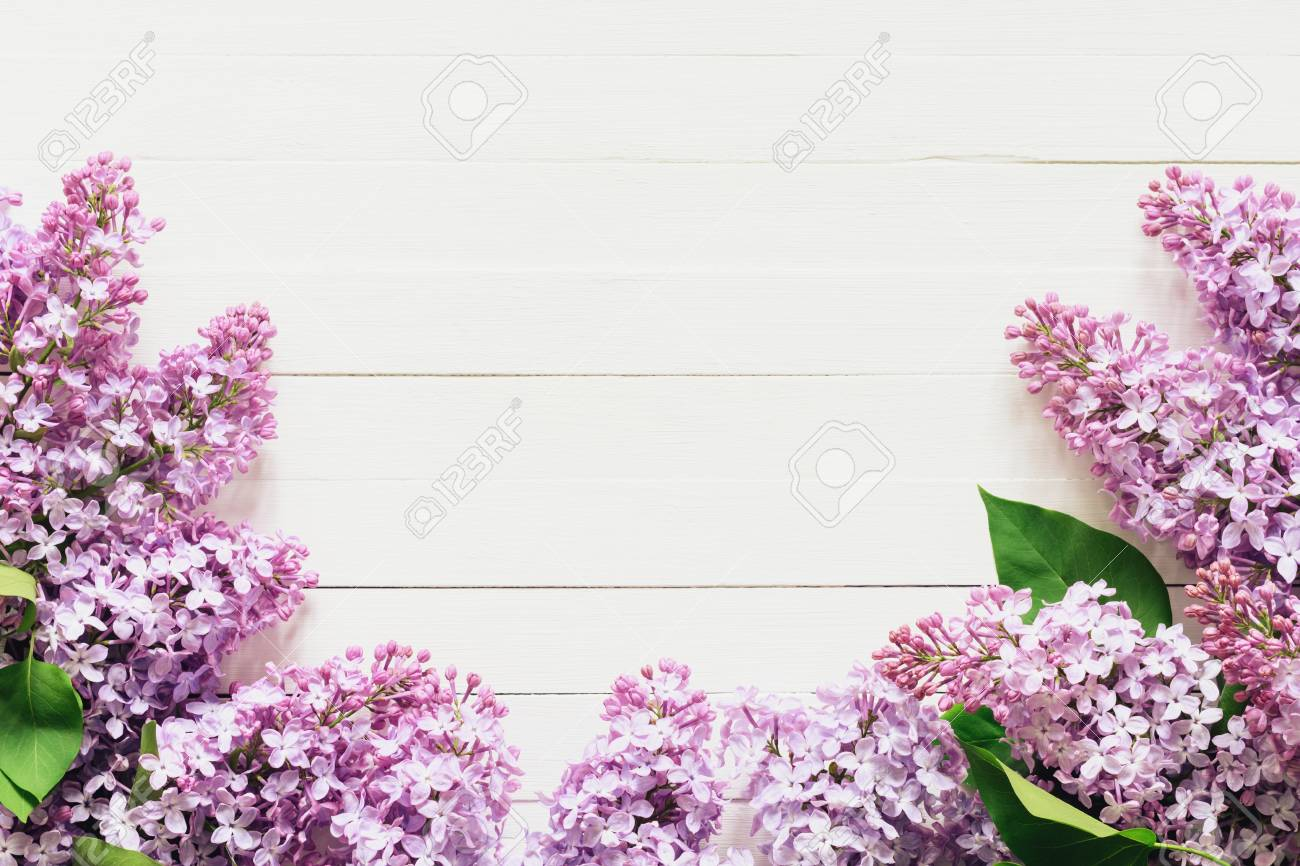 Lilac Flowers Floral Background Lilac Flowers Frame With Copy
