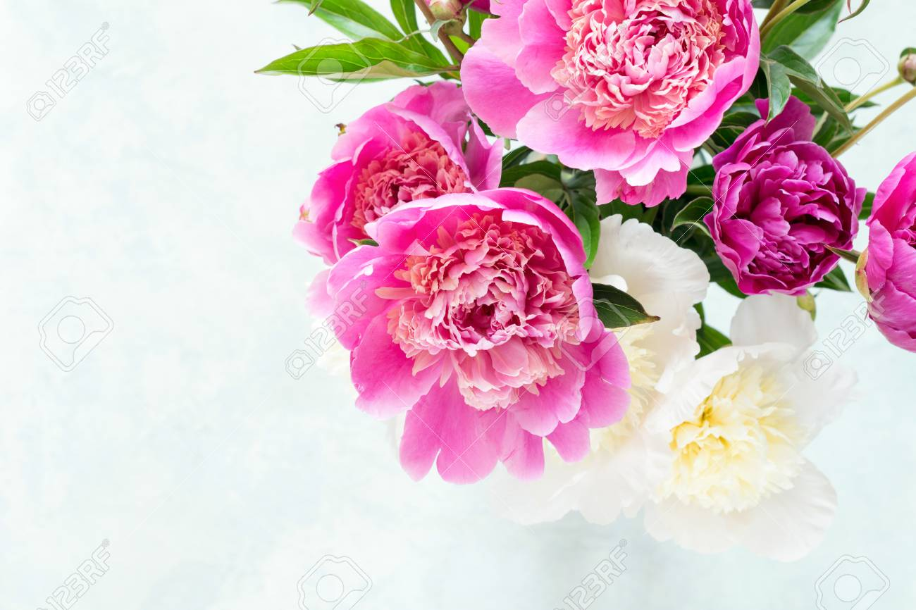 Peonies beautiful bouquet of pink white and purple peony in vase peonies beautiful bouquet of pink white and purple peony in vase on bright background reviewsmspy