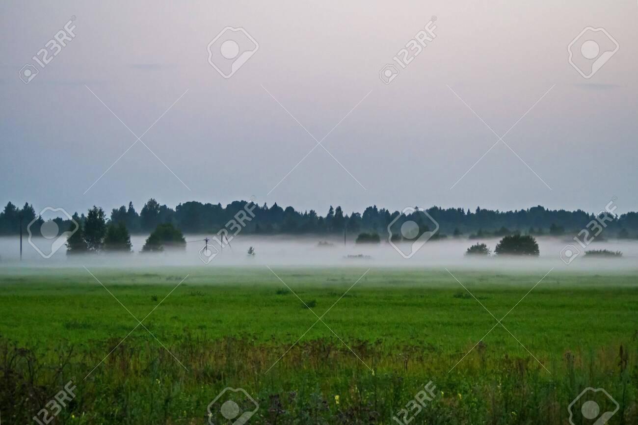 Morning fog in the fields of Leningrad region. - 118778443