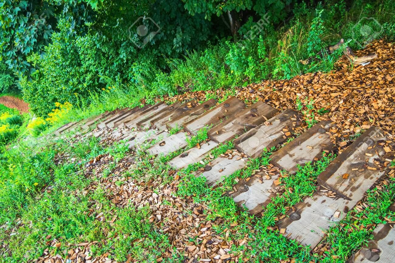 Wooden stairs to lake Peipsi - 118778458