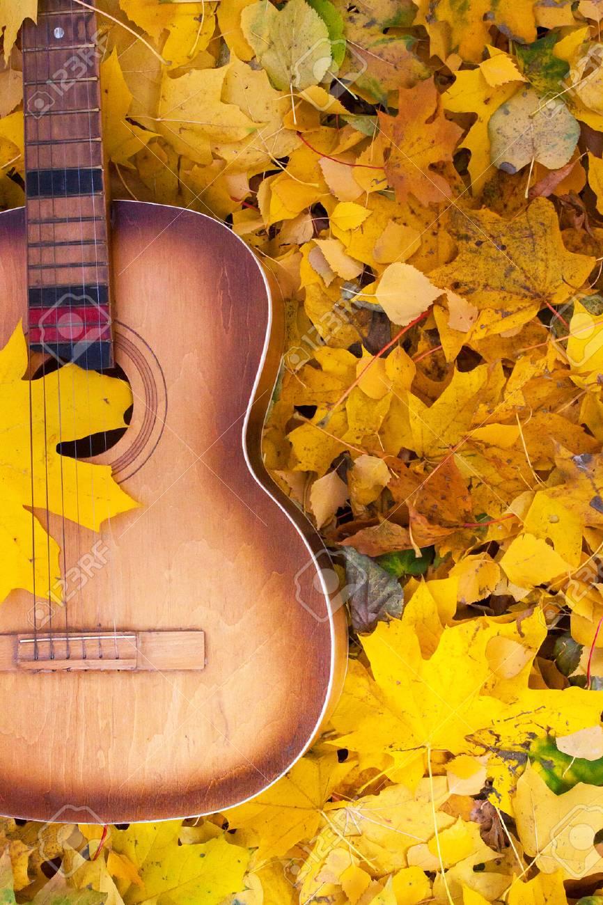 Guitar in autumn leaves. Autumn composition - 47361744
