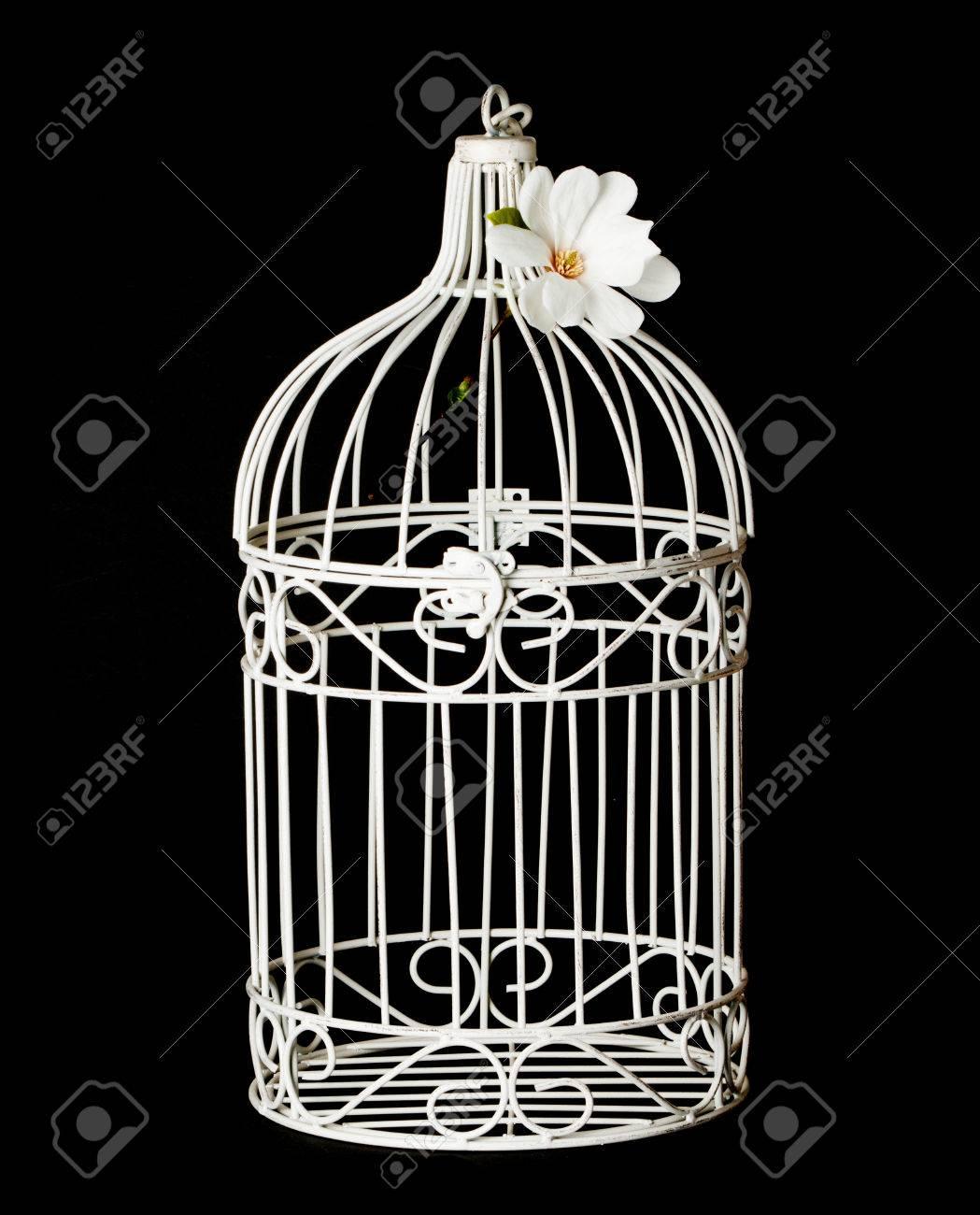 Shabby chic bird cage isolated on black background - 55669240