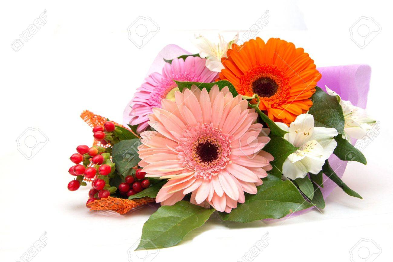 Bunch of flowers stock photos royalty free bunch of flowers images bouquet of gerberas on a white background izmirmasajfo