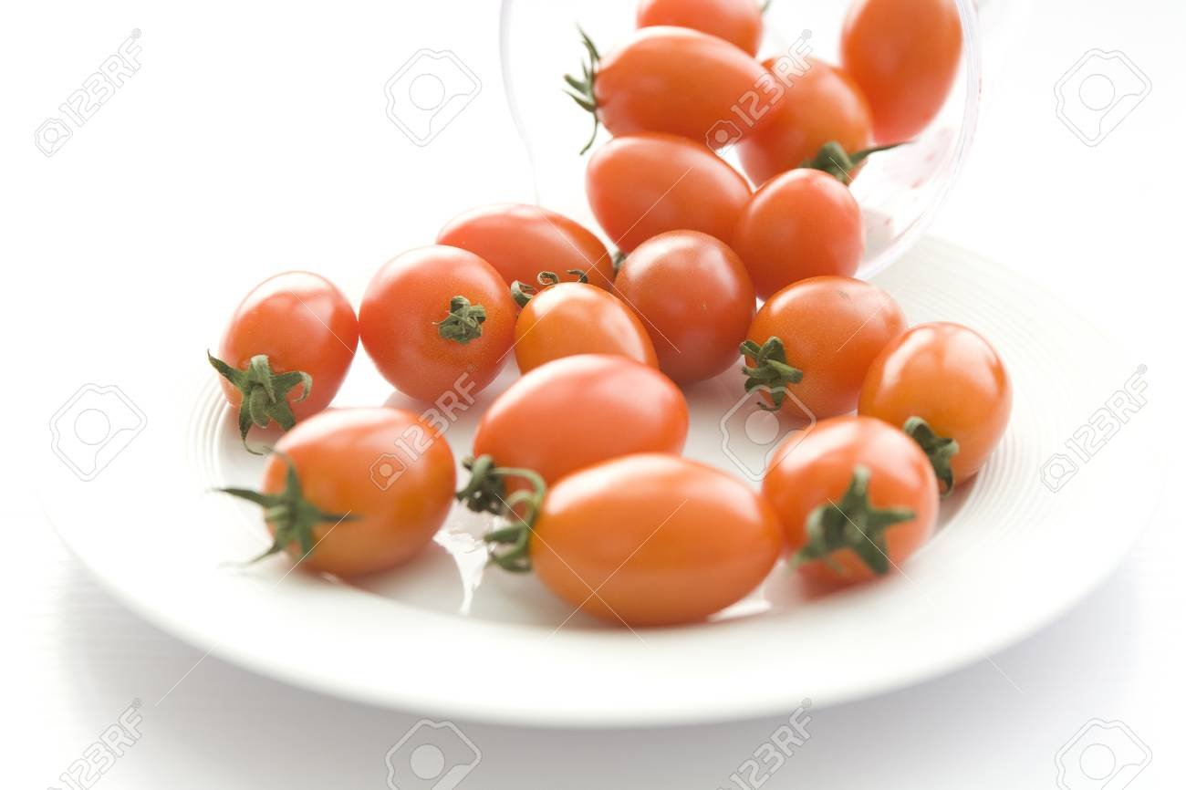 Tomato of the World food info. Stock Photo - 10231010