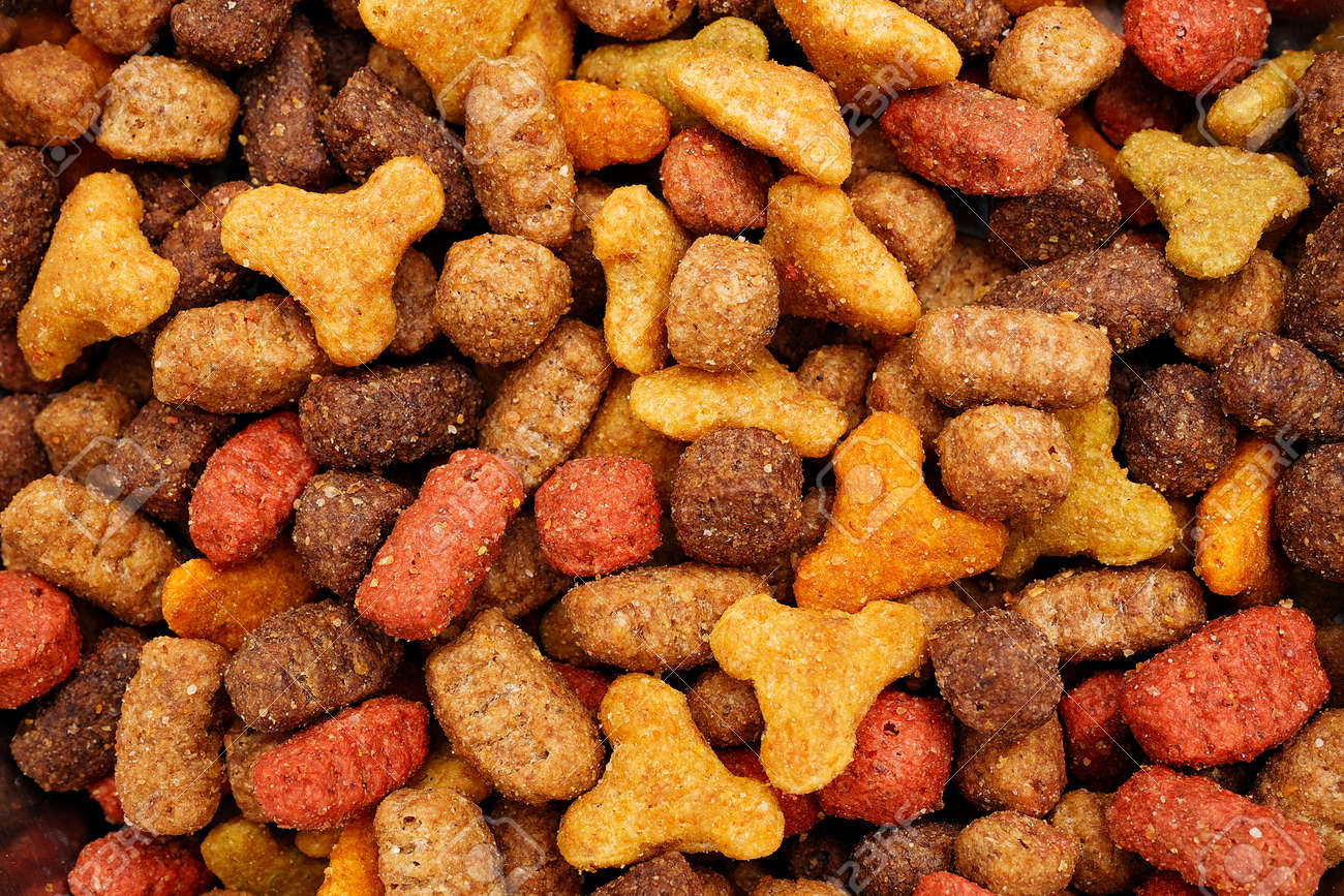 macro of pet dry food background - 165473382