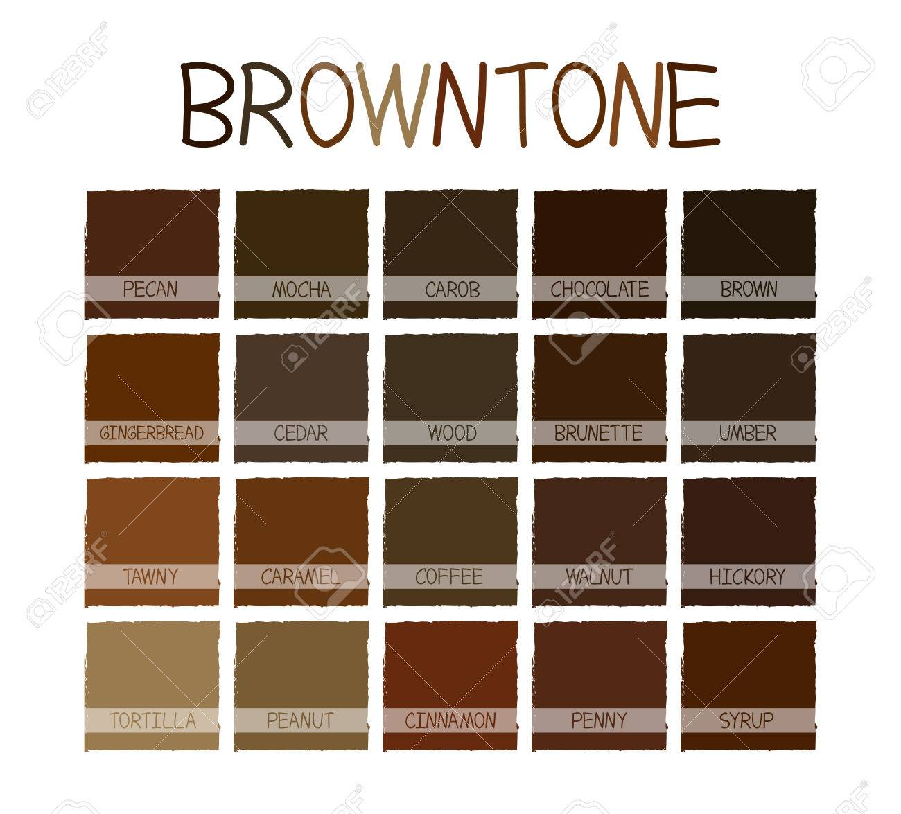 Browntone Color Tone with Code Illustration