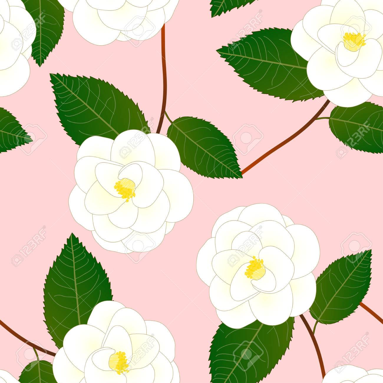 White camellia flower on pink background vector illustration stok fotoraf white camellia flower on pink background vector illustration mightylinksfo