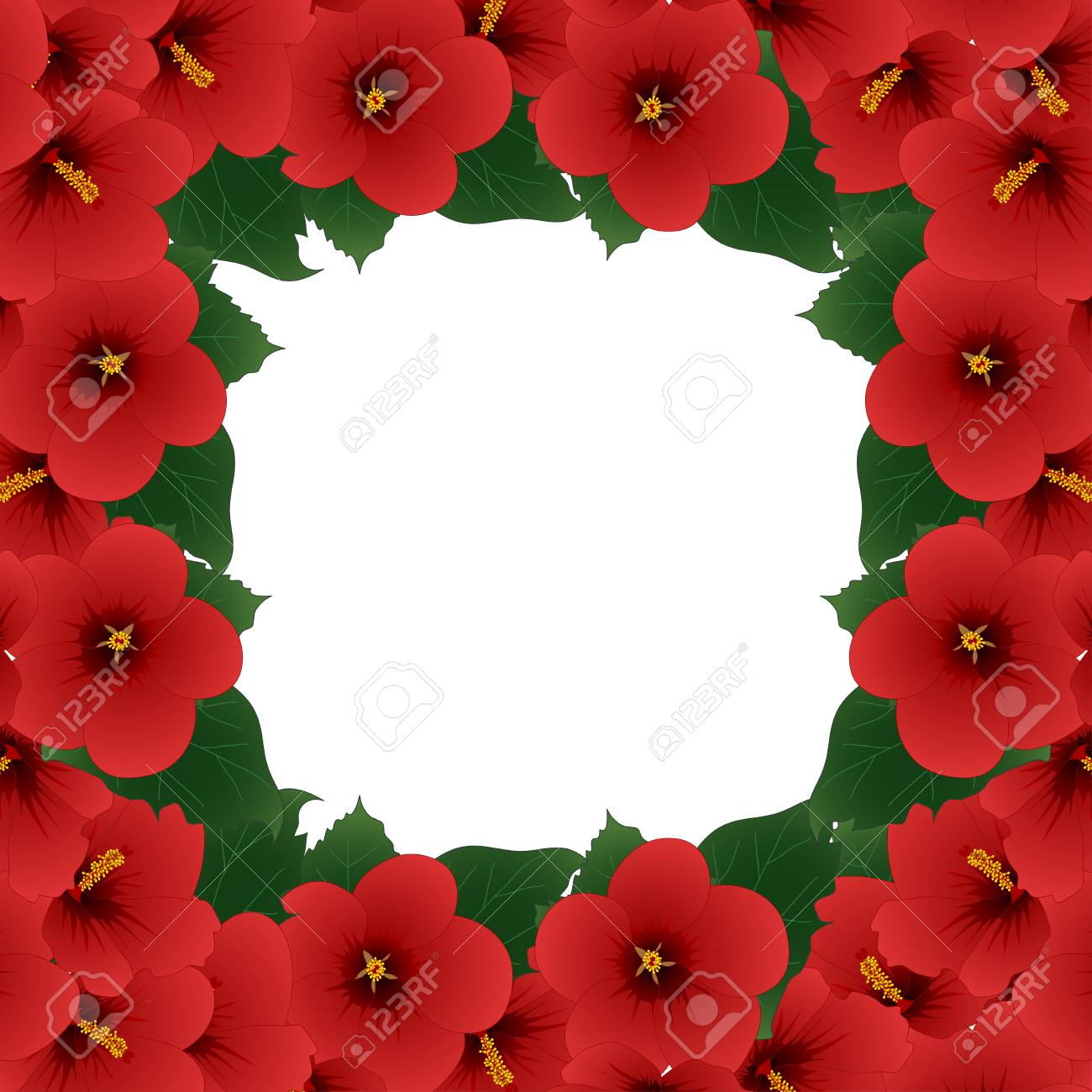 Red Hibiscus Flower Rose Of Sharon Border Vector Illustration