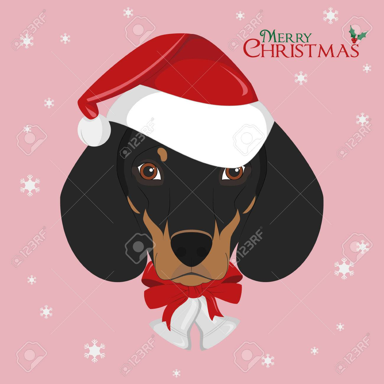 Christmas greeting card dachshund dog with red santas hat and christmas greeting card dachshund dog with red santas hat and christmas bells stock vector kristyandbryce Image collections