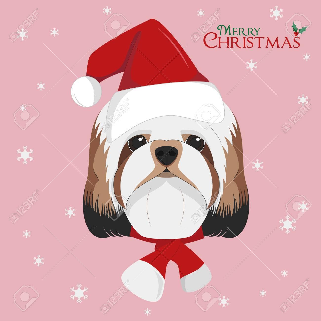 Christmas Greeting Card Shitzu Dog With Red Santas Hat Royalty