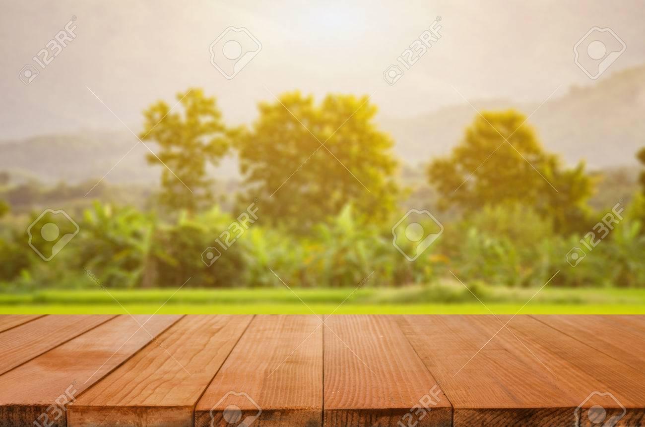 Table De Bureau Sombre Vide Et Espace De Gravier De La Forêt Verte ...