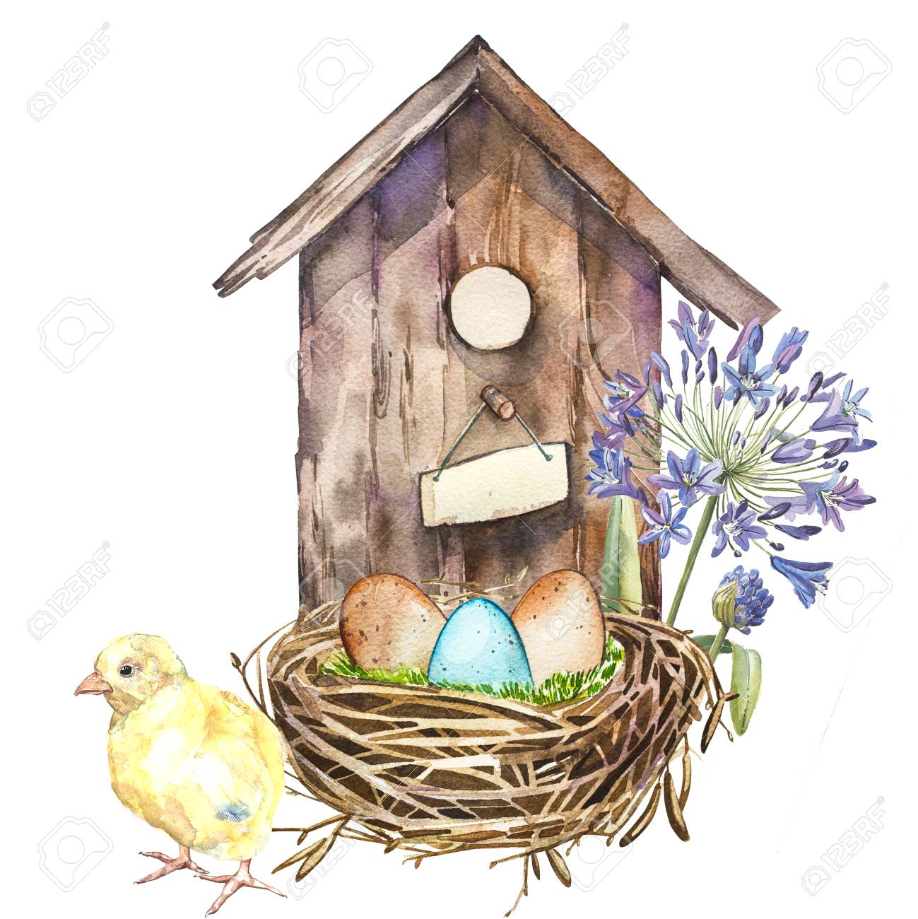 Watercolor Birdhouse With Spring Flowers Rooster Eggs Hand Stock Photo Picture And Royalty Free Image Image 72811554