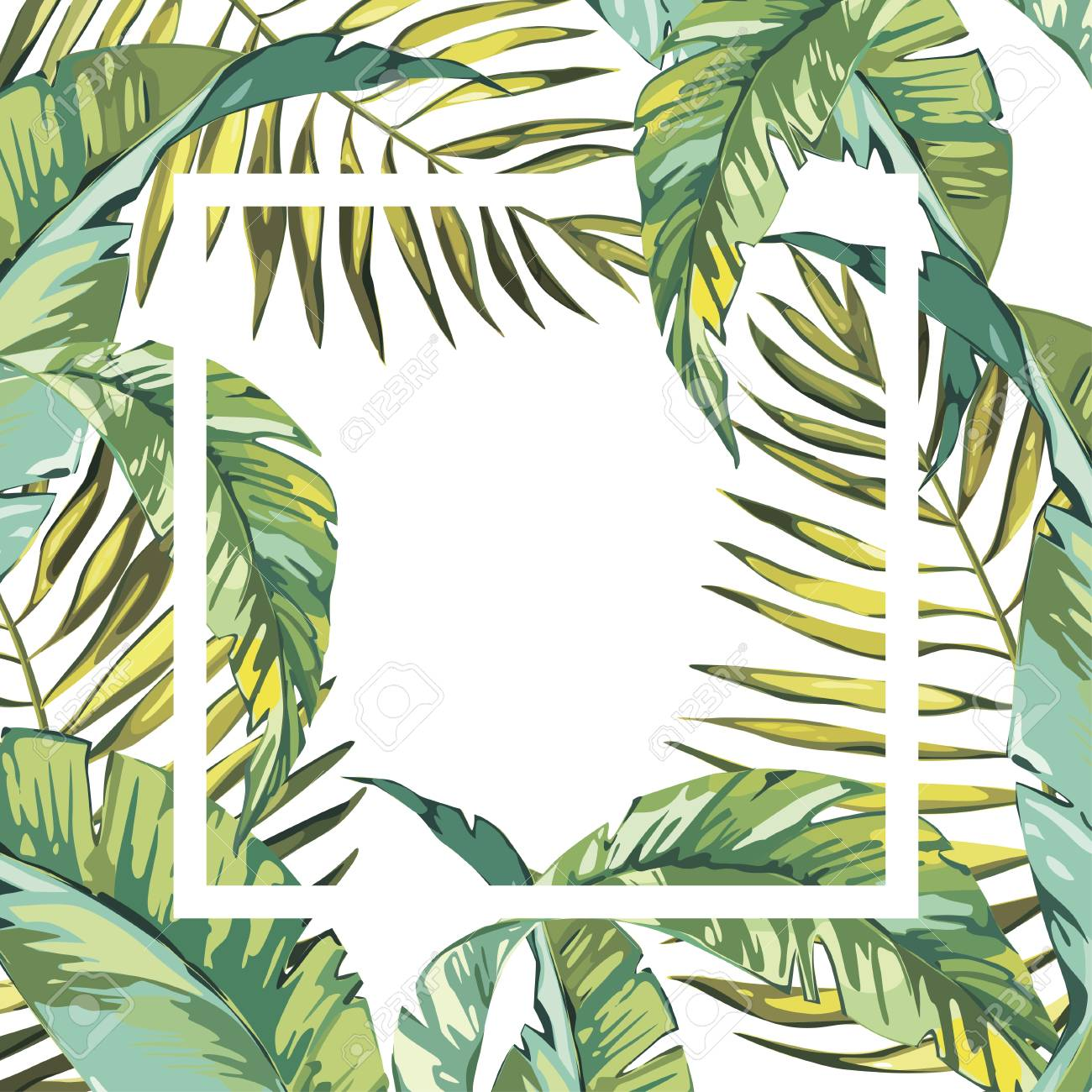 Banner Poster With Palm Leaves Jungle Leaf Beautiful Vector Royalty Free Cliparts Vectors And Stock Illustration Image 75490337 115,000+ vectors, stock photos & psd files. banner poster with palm leaves jungle leaf beautiful vector