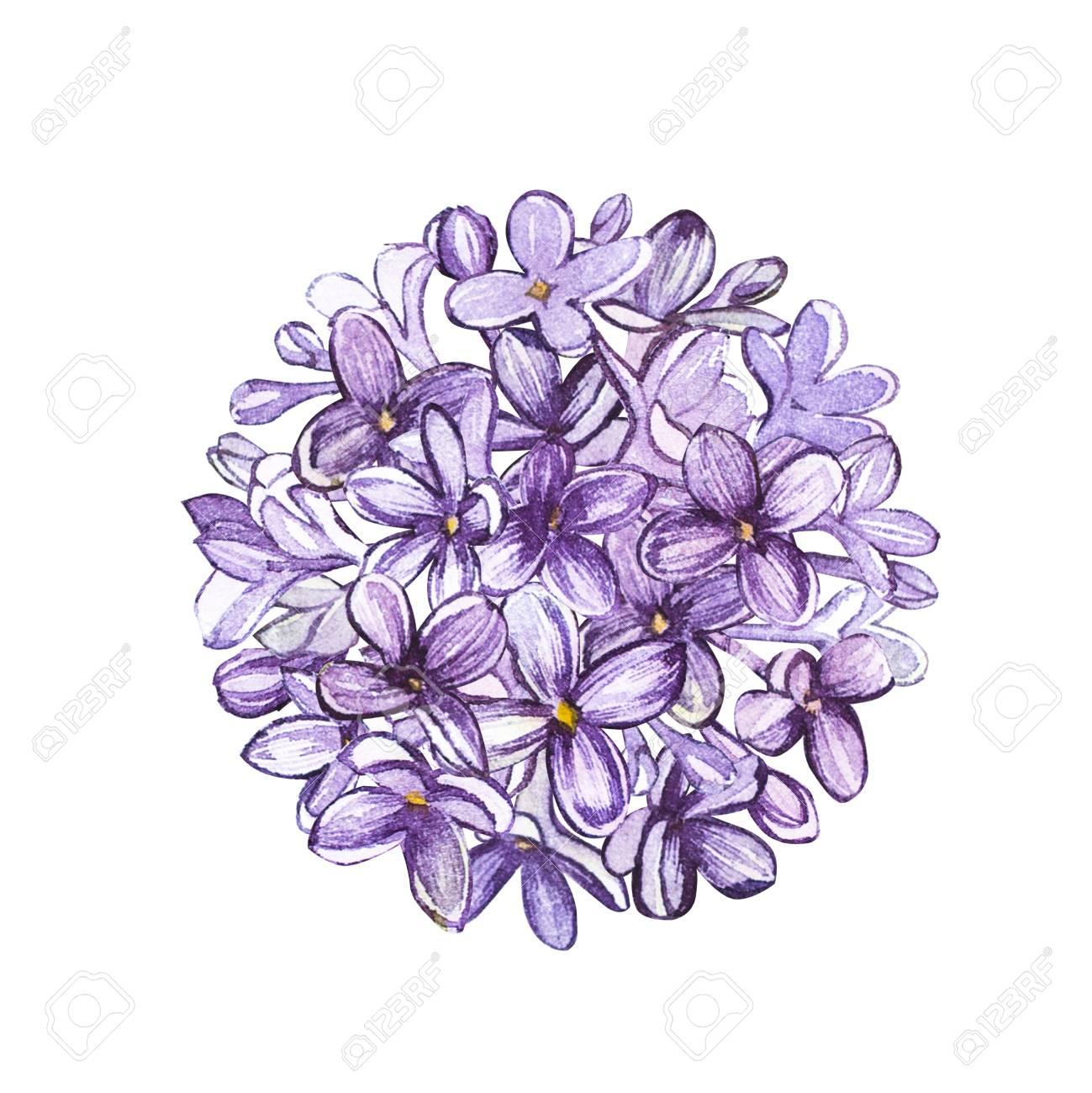 Cercle De Lilas Fleur Aquarelle Tatouage Art Ou Conception De T