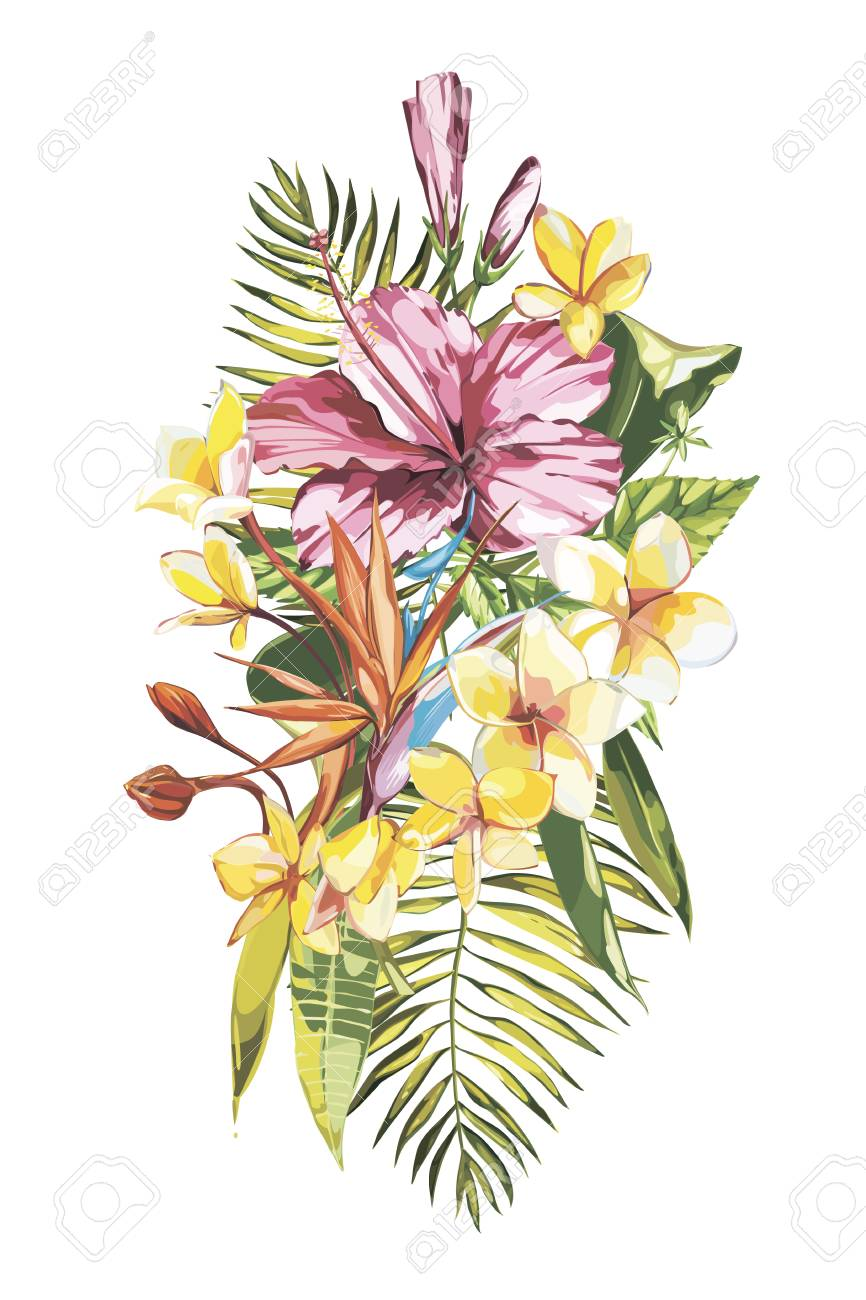 Watercolor Painting Tropical Bouquet With Exotic Flowers. EPS ...