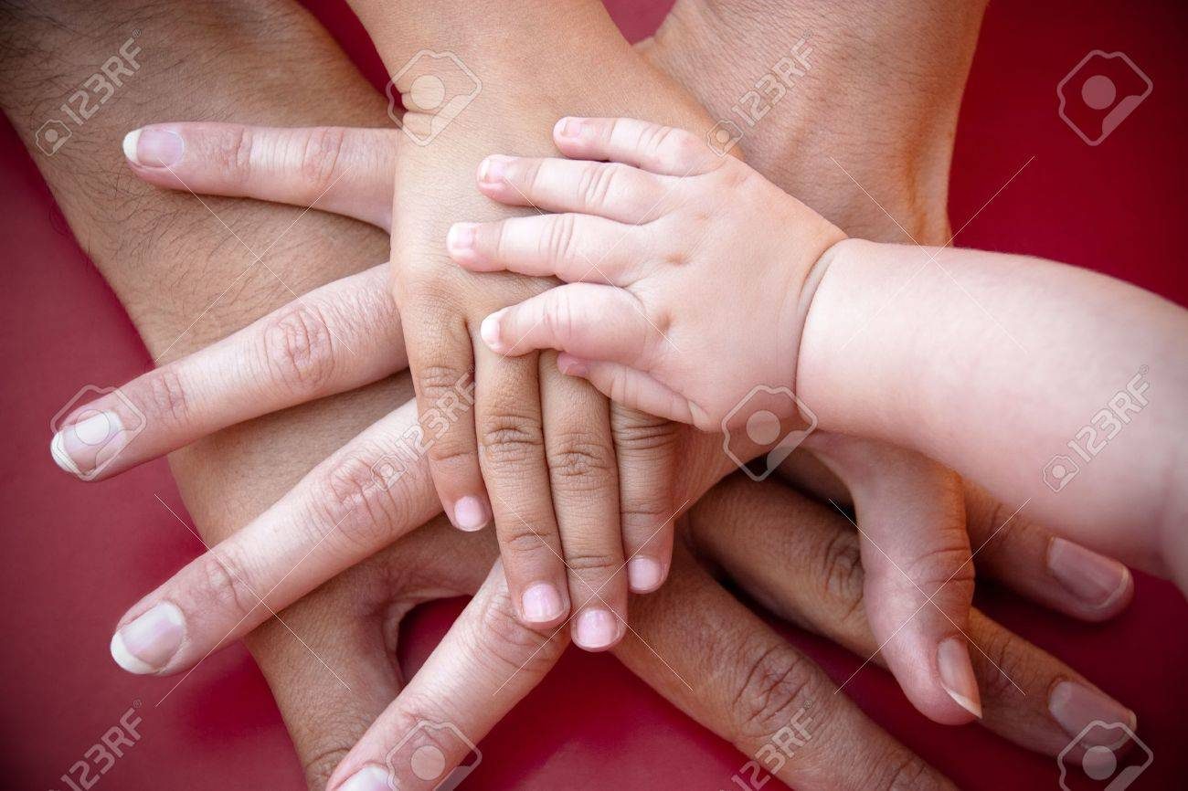 Four hands of the family,  a baby, a daughter,  a mother and a father. Concept of unity, support, protection and happiness. Stock Photo - 16219288