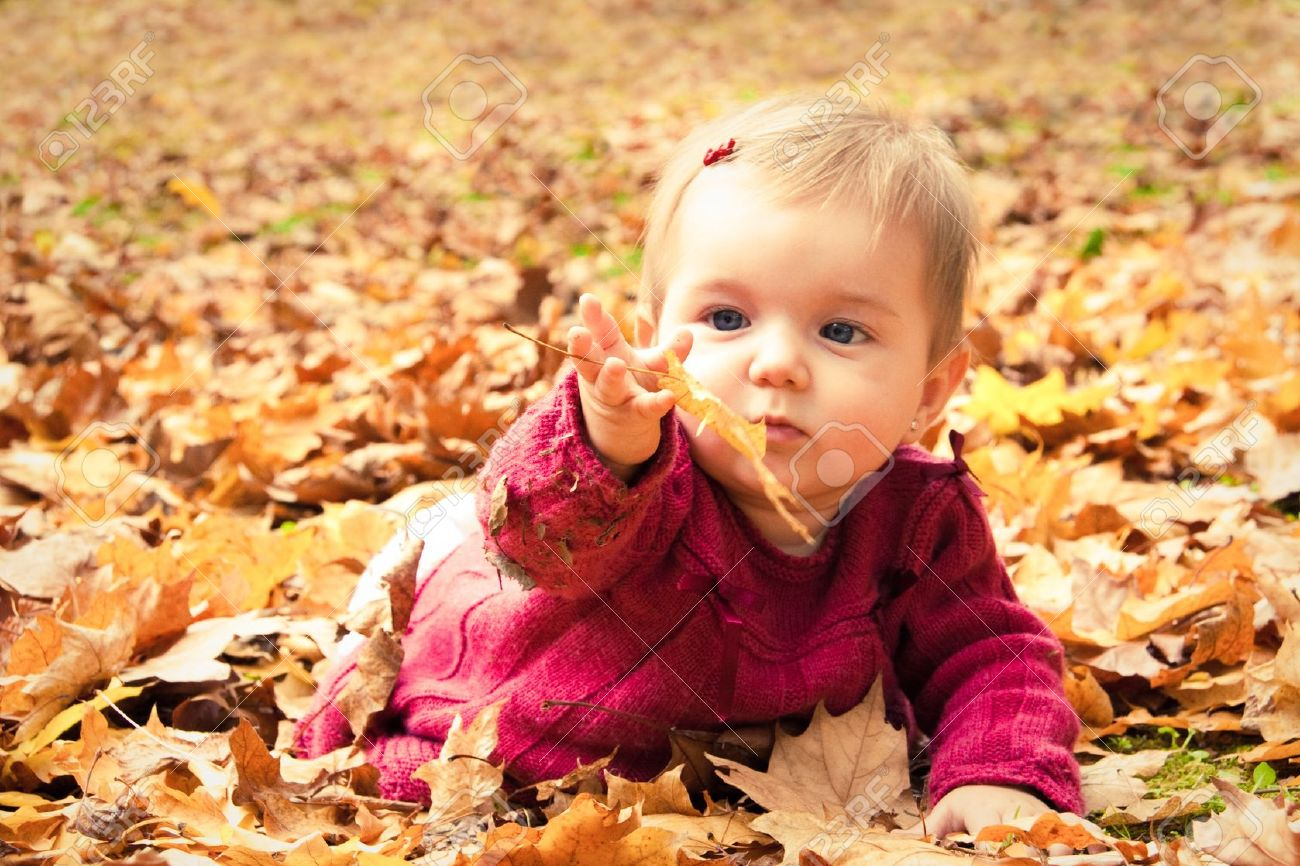 Cute baby girl playing with leaves in autumn Stock Photo - 21143708