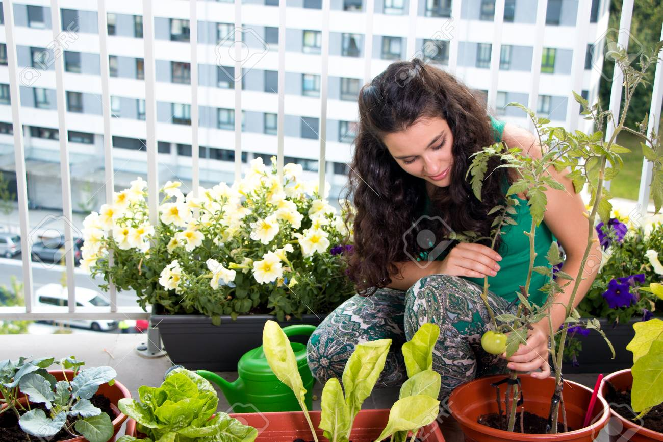Young woman proud of her small kitchen garden in pots on her balcony in the city - 97303791