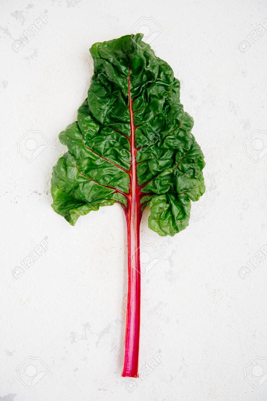 Swiss Chard Leaf On A Rugged White Background Stock Photo Picture And Royalty Free Image Image 127734651