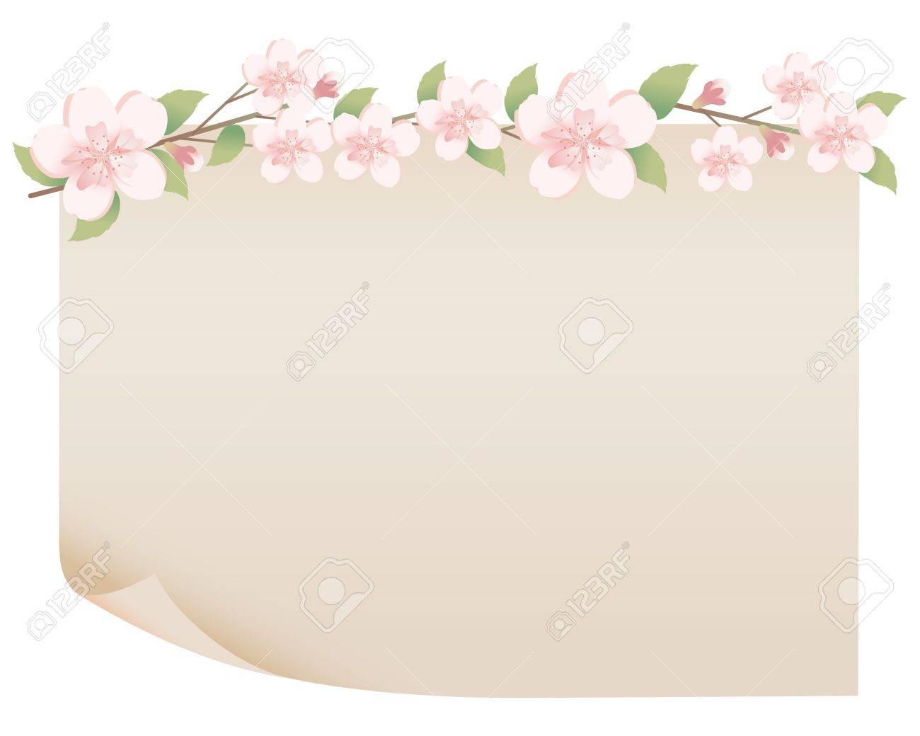 old paper and spring flower Stock Vector - 12182979