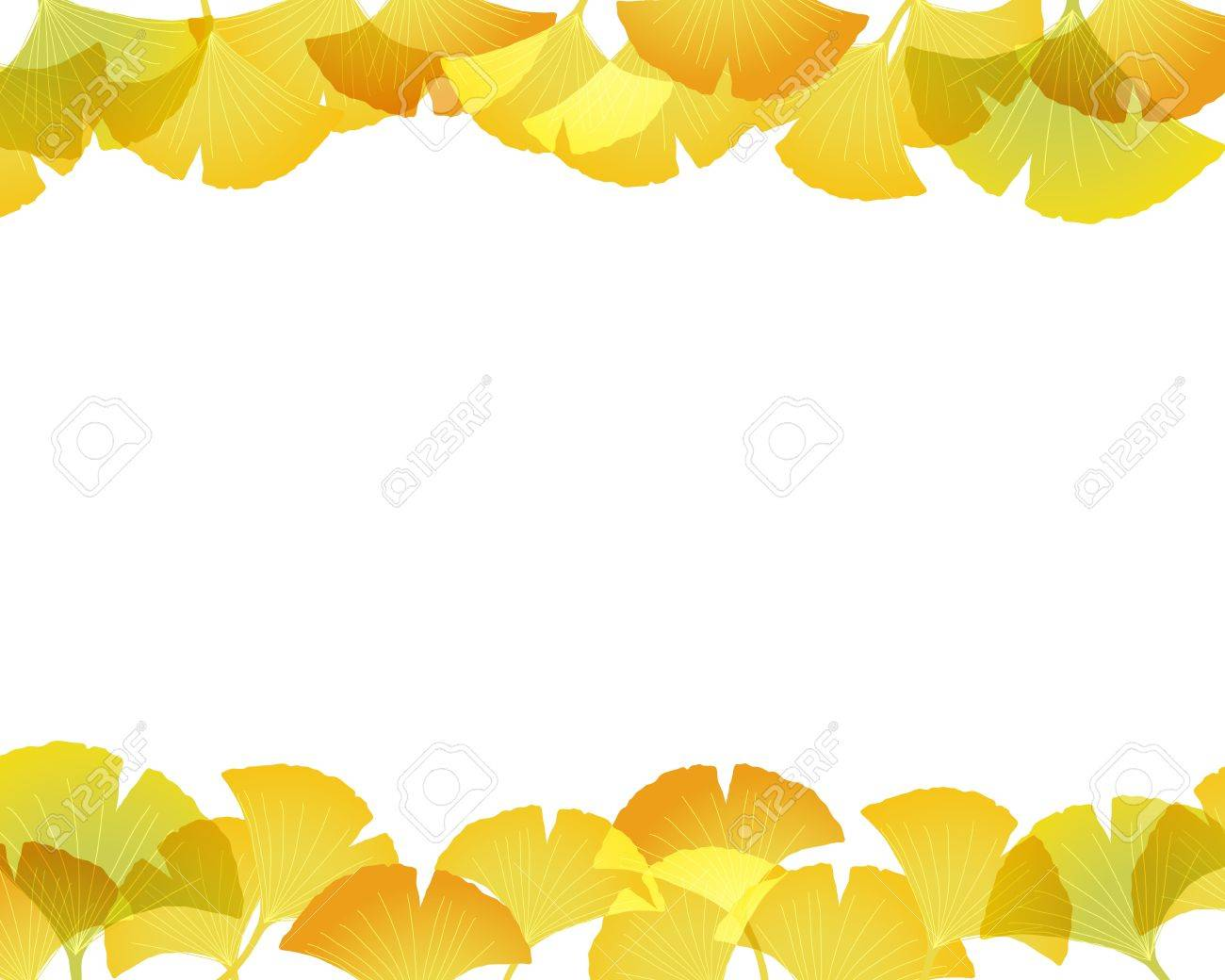ginkgo background Stock Vector - 12482399