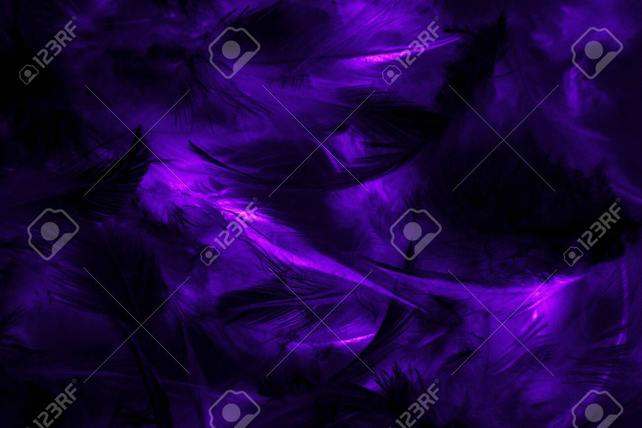 Beautiful Abstract Texture Close Up Color Black Purple And Blue