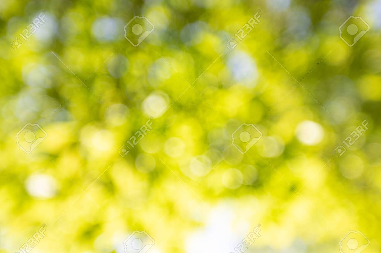 Spring background, green leaves on blurred background - 131203099