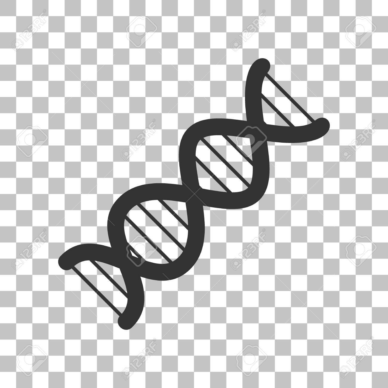 the dna sign. dark gray icon on transparent background. royalty free