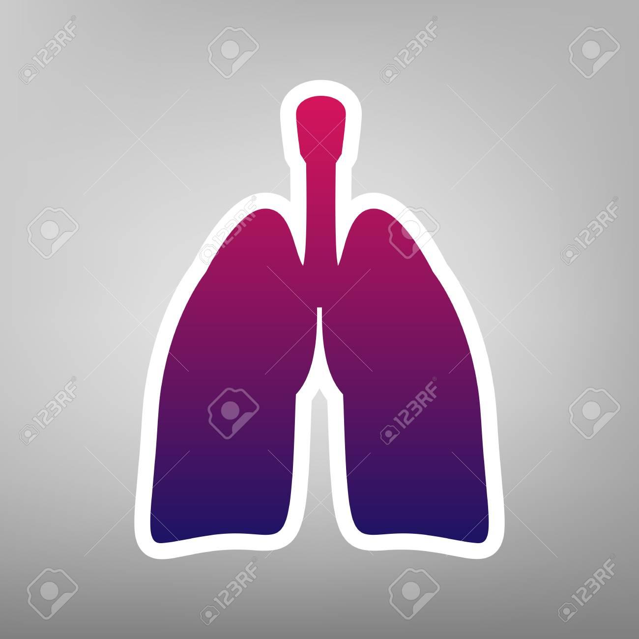 Anatomía Humana. Signo De Los Pulmones Vector. Icono De Gradiente De ...