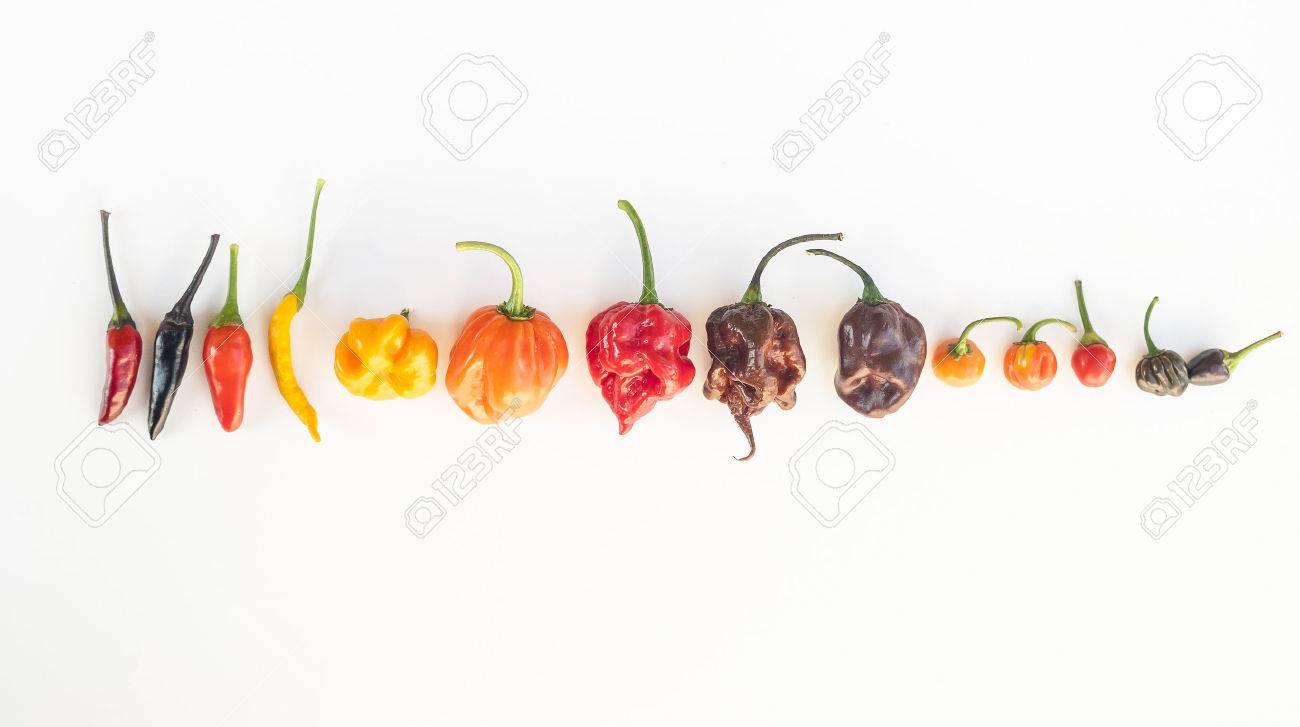 Chili Bilder a colorful mix of the chili peppers chili habanero