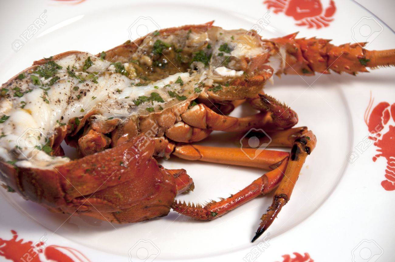 closeup of lobster on seafood plate - 9651399