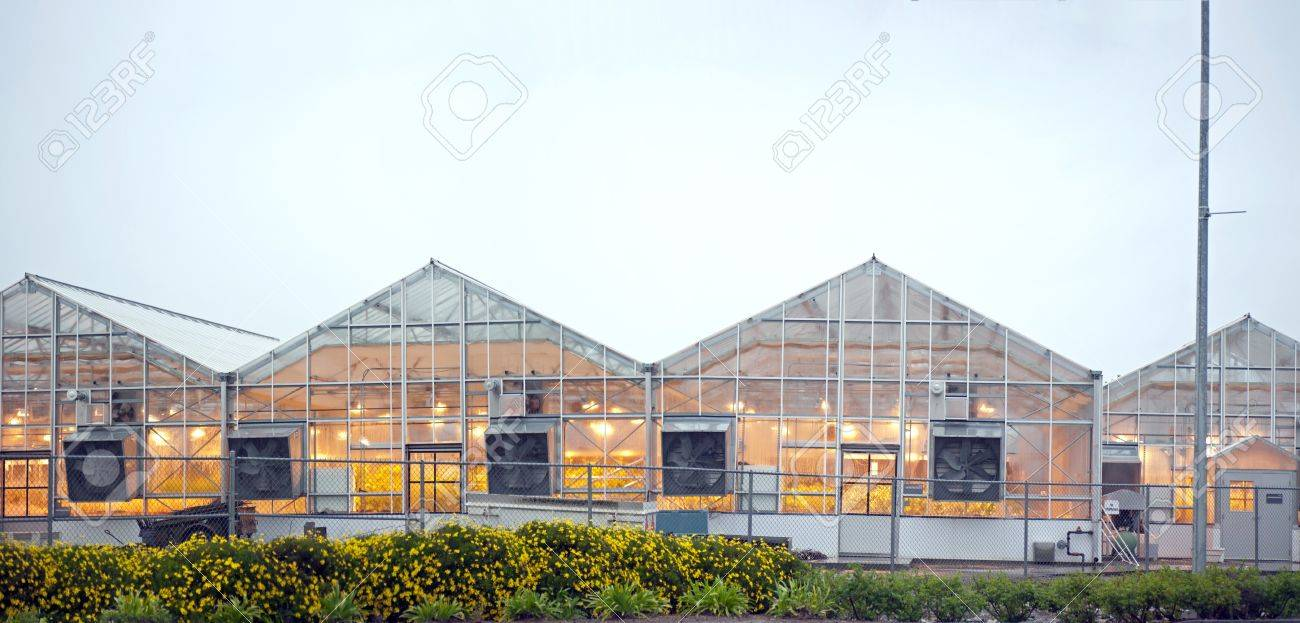 lighted greenhouses in uc davis - 9731998