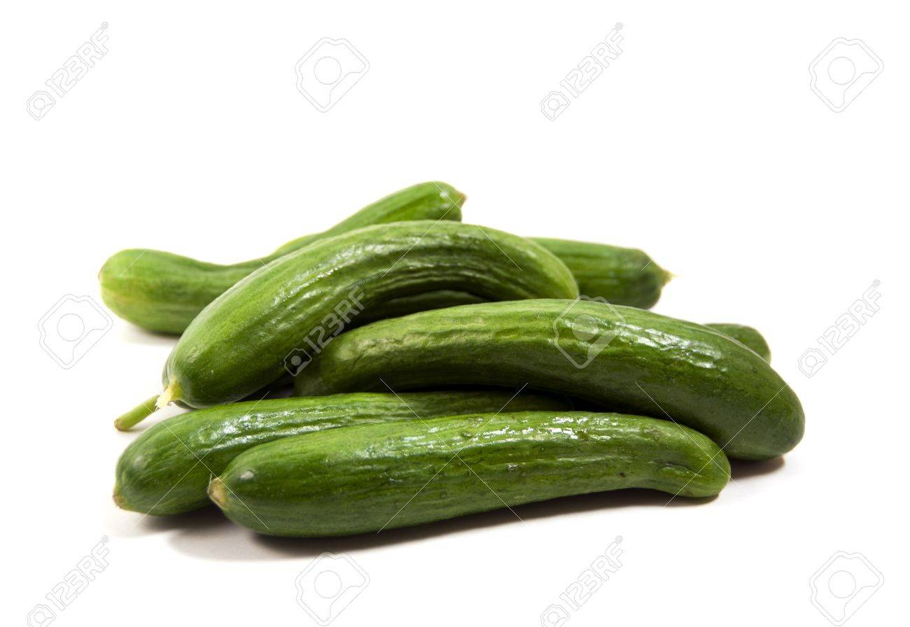 pickling cucumbers isolated on white - 10453173