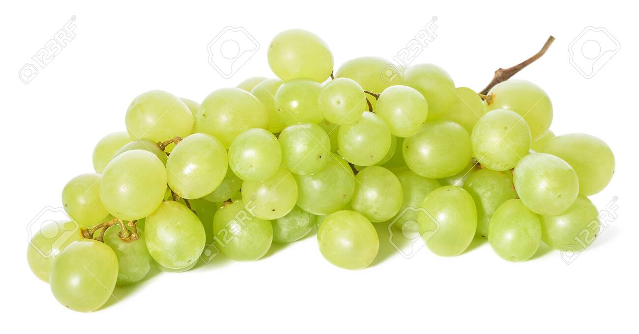 Grapes isolated - 127824637