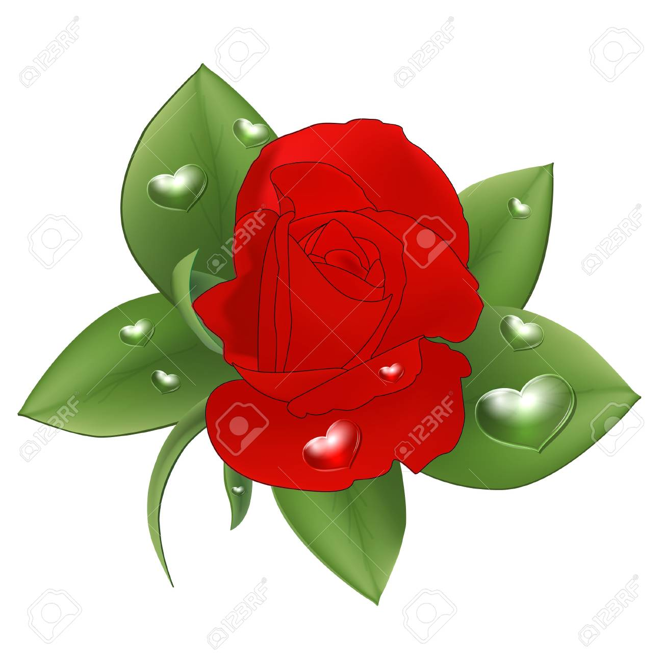Red rose with drops in the form of heart on a white background. Stock Vector - 18134777
