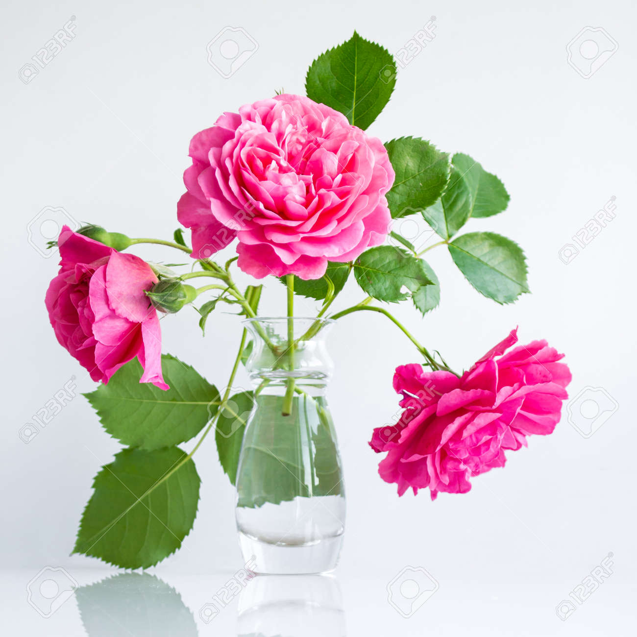 romantic delicate bouquet of pink garden roses on white background - 170431028